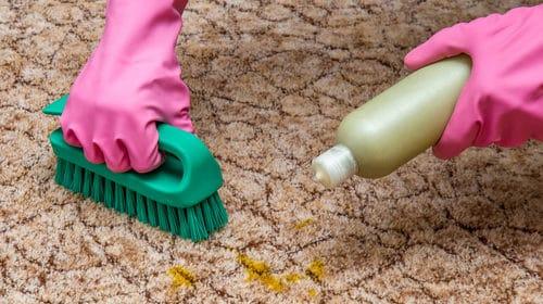 Hĺbková dezinfekcia kobercov a strojové rotačné čistenie Bratislava, Tepovanie kobercov, sedačiek