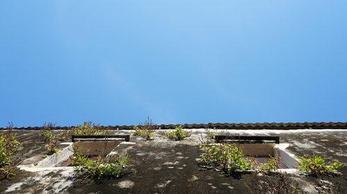 Jak čistit znečištěné zateplené fasády od plísně, řas a mechů