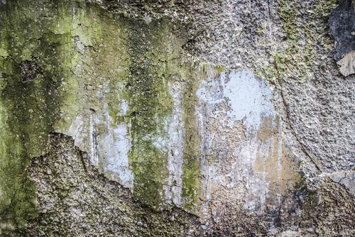 levné vyčištění fasády
