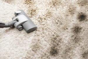 firma na mytí koberců
