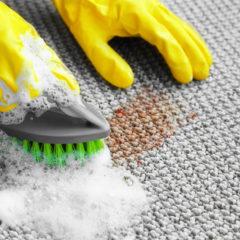 Díky strojovému čištění se nemusíte bát, že by váš koberec měl být špinavý